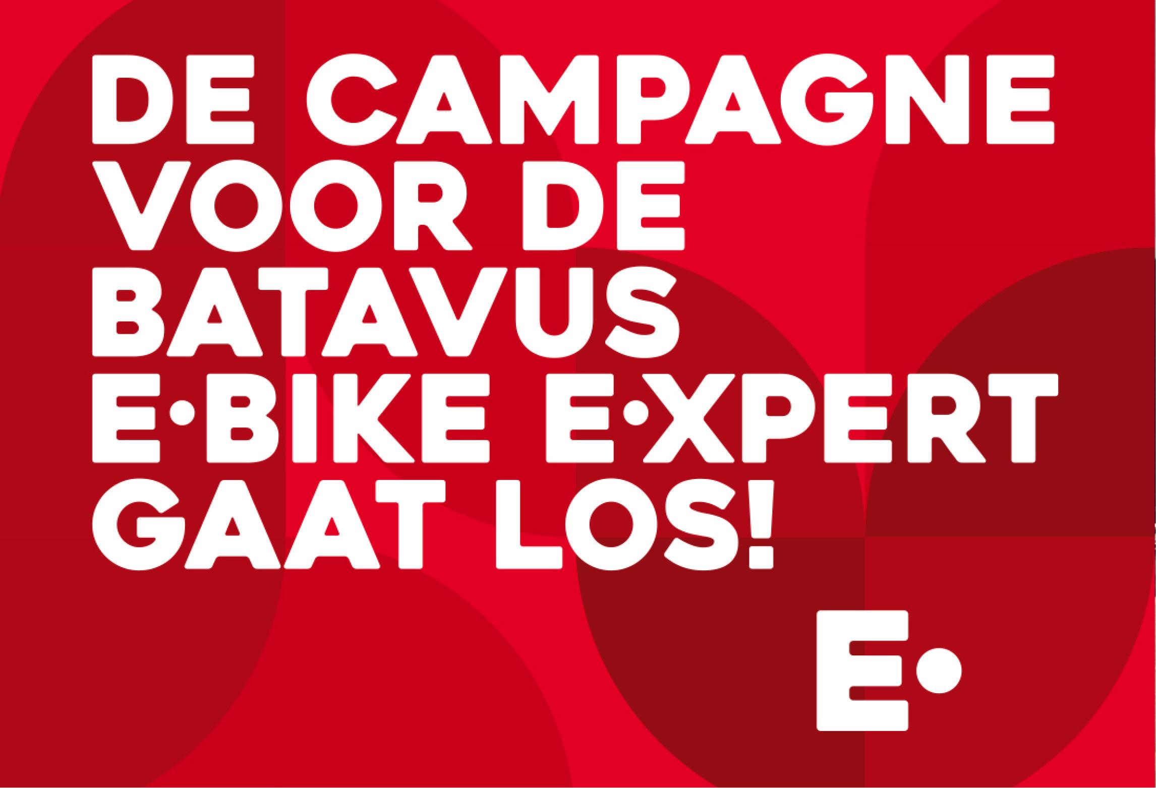 Batavus E-bike E-xpert
